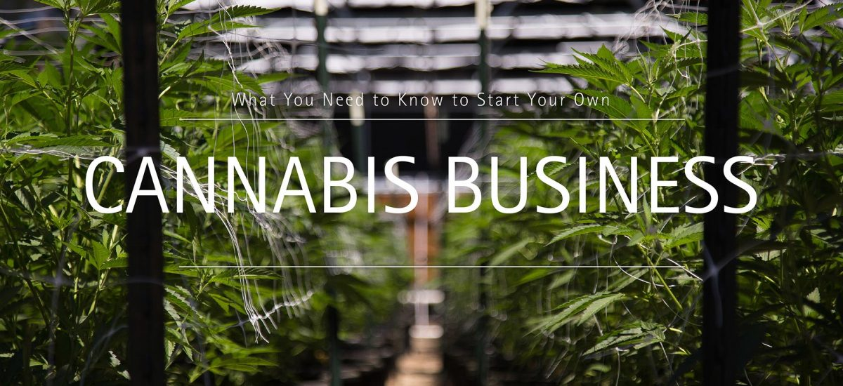 What You Need to Know to Start Your Own Cannabis Business