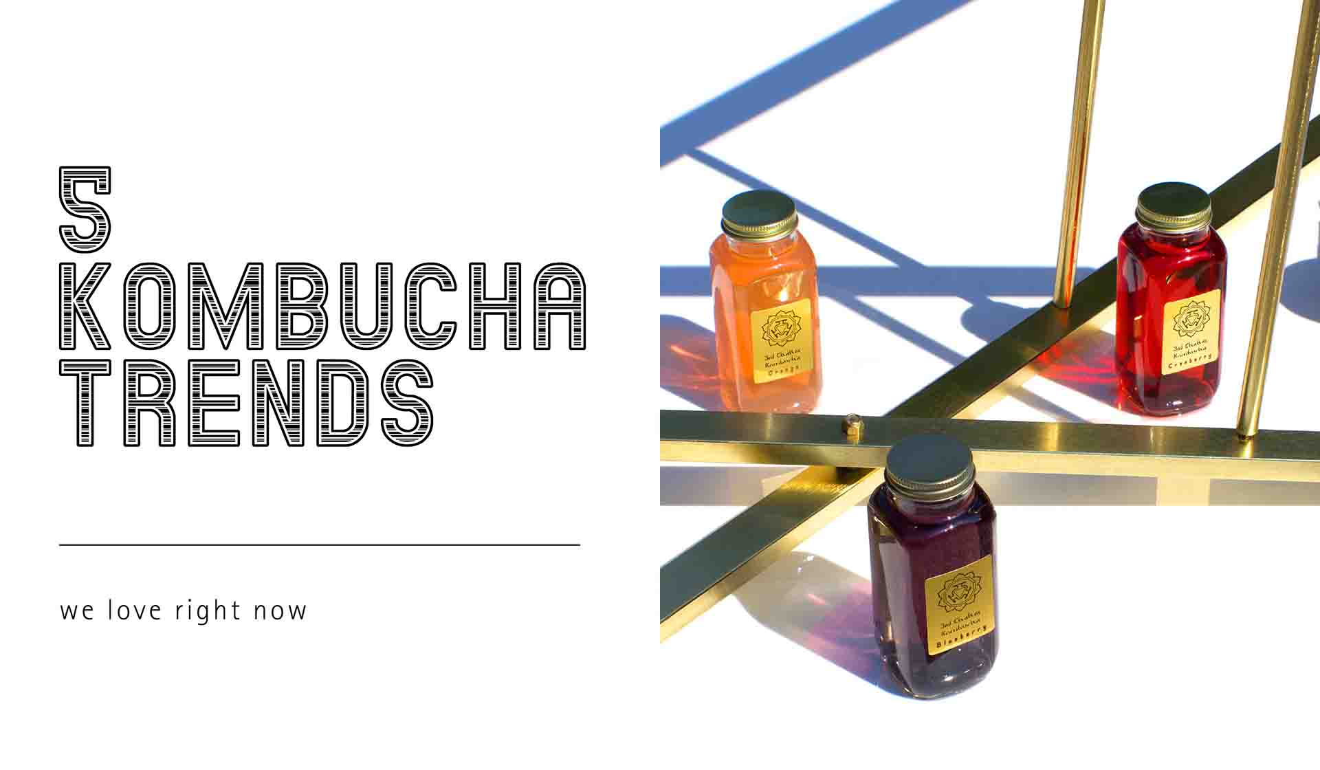 Five Kombucha Bottle Branding Trends We Love Right Now