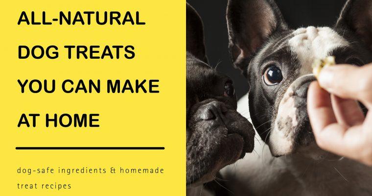 All-Natural Dog Treats You Can Make at Home
