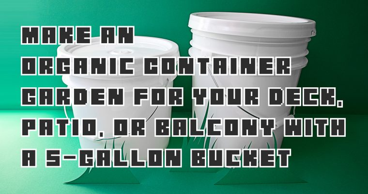 Make an Organic Container Garden for Your Deck, Patio, or Balcony With a 5-Gallon Bucket